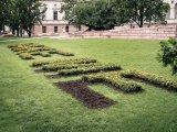 Installation mit entnommenen Blumen